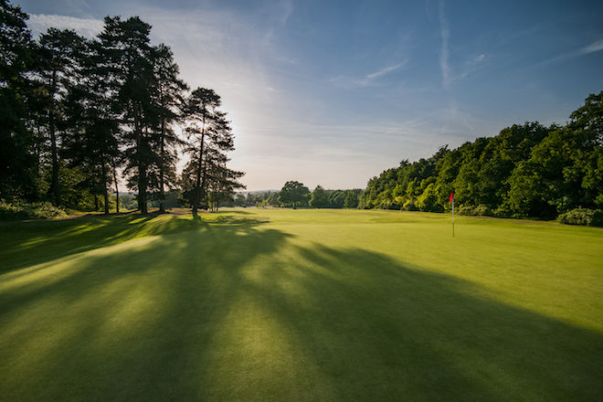 Golf Course green surrounded by trees, with blue skies